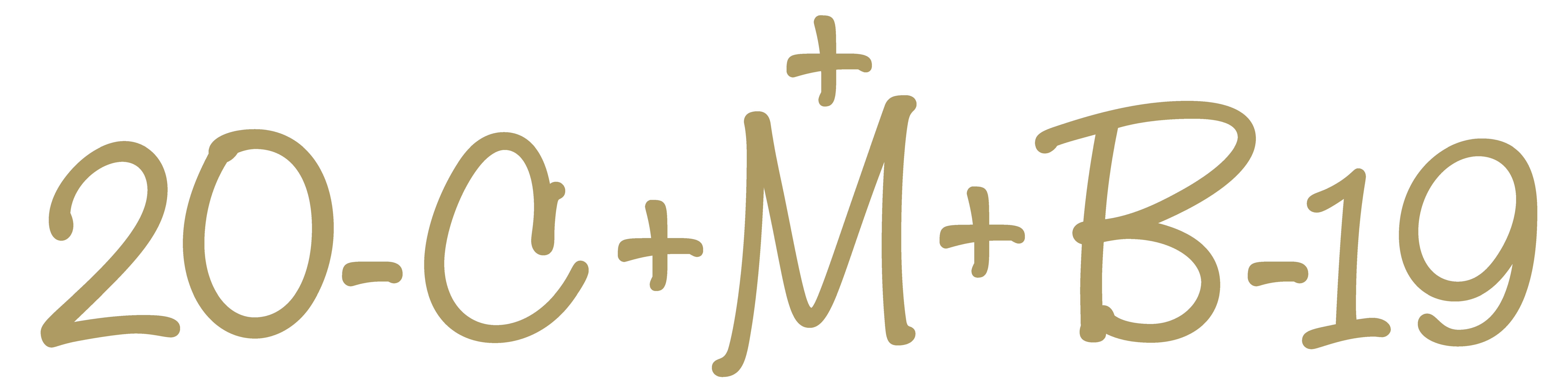 C+M+B Bedeutung